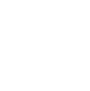 Double Bear Premium Concentrates